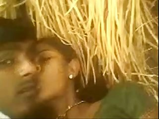 Indian Young hot Bhabhi saree pulled up and fucked in backside yard in village wowmoyback